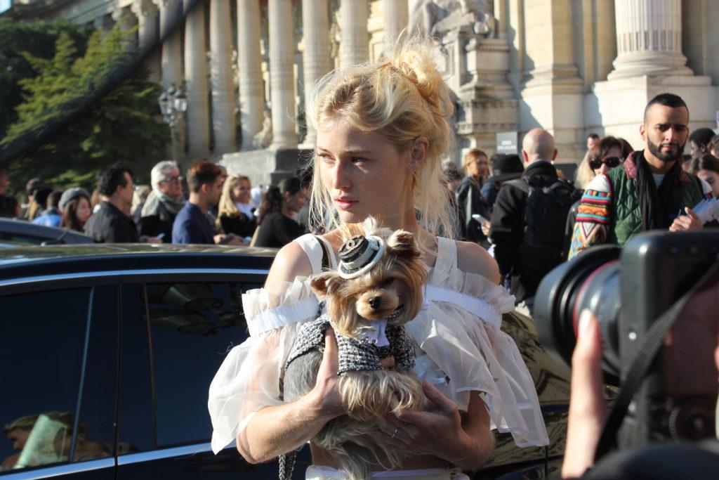 Qui est in, qui est out L I L O U ' s #lilous lifestyleblog @KPohjanvirta #chanel #paris #steinrohner #editioncactus @bbmixa #fashionweek Paris #14ème